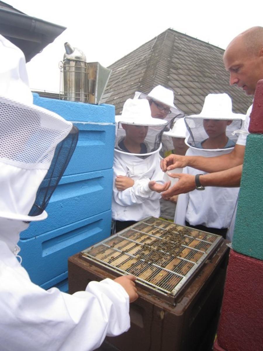 Besuch beim Imker in der Liebigschule